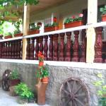 Casa de sub Stinca, Trebujeni