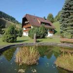 Hotel Pictures: Gästehaus Absbachtal, Bad Rippoldsau-Schapbach