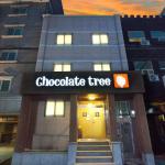 Chocolate Tree Sinchon, Seoul