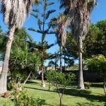 Casa Vacanze Mediterraneo, Trappeto