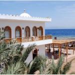 Hotel Pictures: Shams Hotel & Dive Centre, Dahab