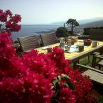 Hotel Pictures: Casa Ida, Garachico