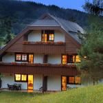酒店图片: Sonnenresort Maltschacher See, 菲尔德茵卡特