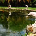 Rock Lake Resort,  Fort Myers