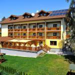 Hotellbilder: Hotel Alex, Sankt Kanzian