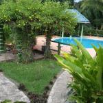 Inn the Bush Eco-Jungle Lodge, San Ignacio