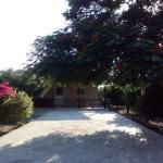 Cottage in Cyprus, Argaka