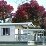 Fotos de l'hotel: Beechworth Lake Sambell Caravan Park, Beechworth
