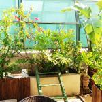 Garden Apartment Next to Xiamen University, Xiamen