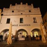 Hotel Pictures: Hotel Bílý Koníček, Třeboň