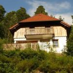Hotel Pictures: Apartmenthaus Ansica, Hornberg