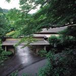 Tsubaki,  Yugawara