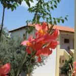 Hotel Heleni Apartments,  Ancient Epidavros