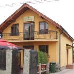 Vila Korona, Satu Mare