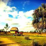 Everglades Chickee Cottage & Bungalow - Ochopee,  Ochopee
