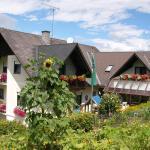 Photos de l'hôtel: Gästehaus Anna, Unterlamm