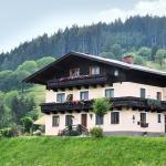 Fotos de l'hotel: Bio-Bauernhof Reitmayrgut, Goldegg
