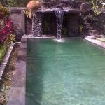 Pondok Bali Sea View Bungalow, Lovina