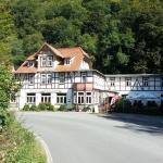 Hotel Pictures: Hotel Zur Luppbode, Treseburg