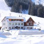 Photos de l'hôtel: Hotel Passhöhe, Hohentauern