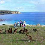 Zdjęcia hotelu: Waves & Wildlife Cottages Kangaroo Island, Stokes Bay