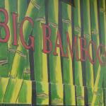 Big Bamboo de Uvita, Uvita