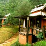 Hotel Pictures: Pousada Vila Solaris, Macacos