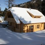 Hotellikuvia: Alpin-Hütten auf der Turracherhöhe, Turracher Hohe