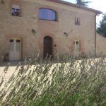 Agriturismo La Segolina, Colle Val DElsa