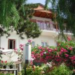 Bache Apartments, Ohrid