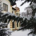 Zámok u Grofa,  Nitra