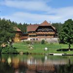 Hotel Pictures: Landhaus Lauble, Hornberg