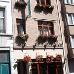 Logies Ocelot, Ostend