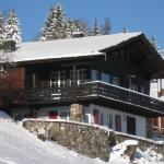 Hotel Pictures: Chalet Domizia, Flumserberg