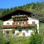 Fotografie hotelů: Haus Schwab, Taxenbach
