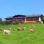 Landhotel Schwarzenbach - Wellness & Spa, Rieden