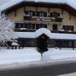 Hotel Pictures: Hôtel la Cascade, Villard-sur-Doron