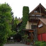 Hotel Pictures: Alte Schreinerei-Auberge Harlekin, Randegg