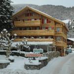 Hotel Pictures: Hotel Alpenblick, Wilderswil