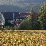 Hotel Pictures: Logis Arts et Terroirs, Gevrey-Chambertin