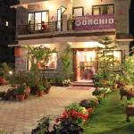 Hotel Orchid, Pokhara