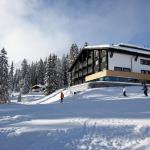 酒店图片: Cresta.Alpin.Sport.Hotel, 莱赫
