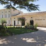 Hotel Pictures: Château de Môle, Puisseguin