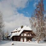 Hotel Pictures: Schwarzwaldhof Nicklas, Holzschlag
