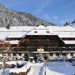 Hotel Pictures: Best Western Hotel Hofgut Sternen, Breitnau