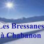 Hotel Pictures: Appartements les Bressanes, Selonnet
