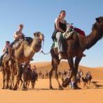 Camel Trekking Bivouac,  Merzouga