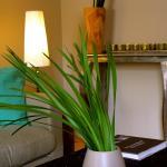 Hotel Pictures: L'Arum de Bois, Ammerschwihr