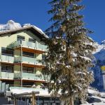 Hotel Pictures: Hotel Hahnenblick, Engelberg