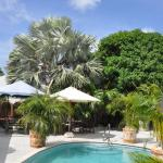 Hotellikuvia: Aruba Harmony Hostel, Oranjestad